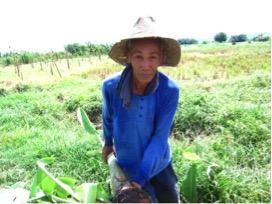 unilever farmer
